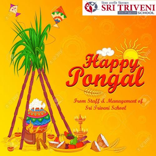 Happy Pongal religious traditional festival.